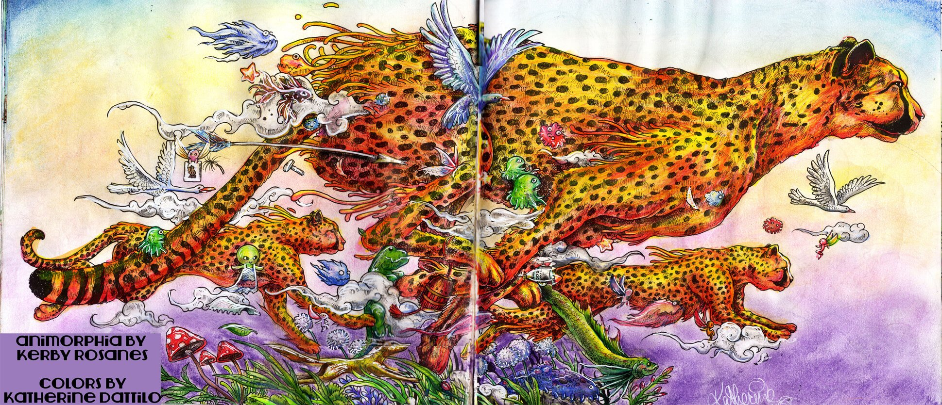 scan of cheetah, compiled