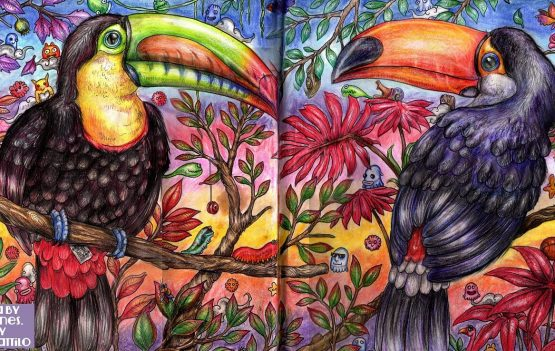 Animorphia Coloring Book, Toucans Process Tutorial