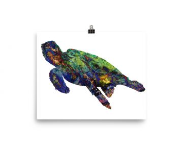 Watercolor Turtle on White Poster